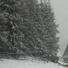"фото ""winter tales 3"""