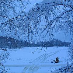 "photo ""In winter"""