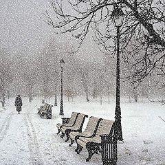 "photo ""Walk during a snowfall"""
