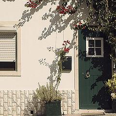 """фото """"Flowered door"""""""