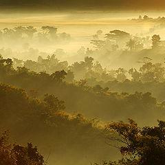 """photo """"Misty sunrise"""""""