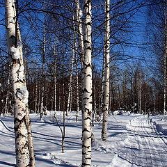 "photo ""Last day of winter..."""
