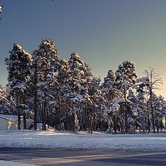 """фото """"Зима, зима..."""""""