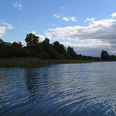 "фото ""Lake-miracle Moltaevo age in 5000 years"""