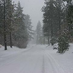 """photo """""""" The Old Mountain Road""""."""""""