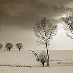 "photo ""En Brabant"""