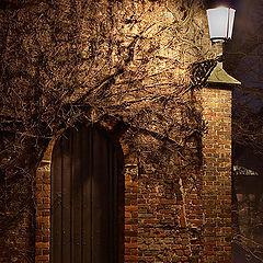 """photo """"Old door..."""""""