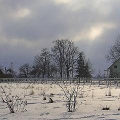 """photo """"Rural landscape"""""""