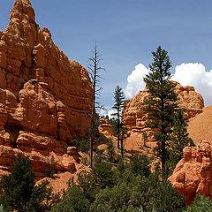 """фото """"The Rock gods of Utah"""""""