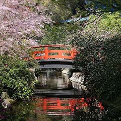 """photo """"' Bridge Over Tranquil Waters """""""""""