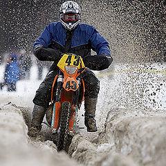 "фото ""Thru the snow"""