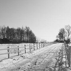 "photo ""Winter lanterns."""