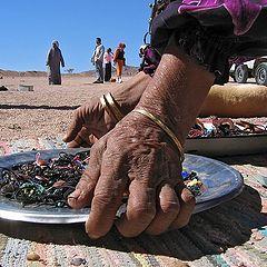 """фото """"На привале у бедуинов."""""""
