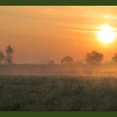 "photo ""Morning foggy..."""