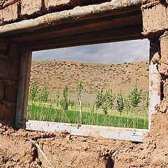 """photo """"окно в мир"""""""