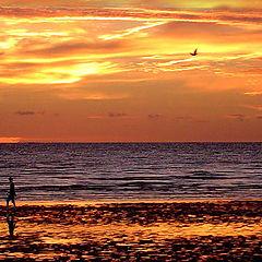 "фото "".. but the sun has set."""