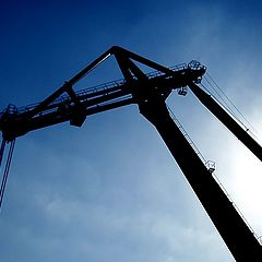 """фото """"Crane"""""""