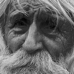 """photo """"Portrait old man"""""""