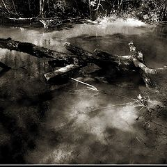 "photo ""Death dream in Black"""