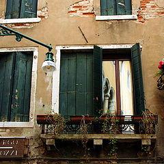 """photo """"Venice Windows"""""""