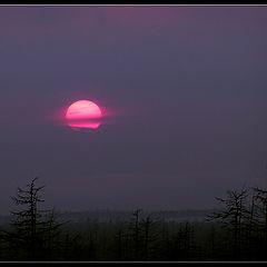 """фото """"Неожиданный закат"""""""