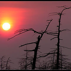 "фото ""Вечер, Чайво 13 мая 2006 г."""