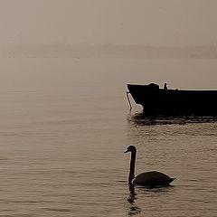 "фото ""Boat"""