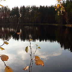 "photo ""Autumn lake"""