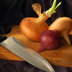 "photo ""Onion"""