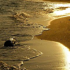 "фото ""Golden sea"""