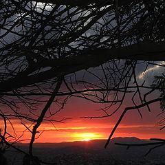 "photo ""fire sunset"""