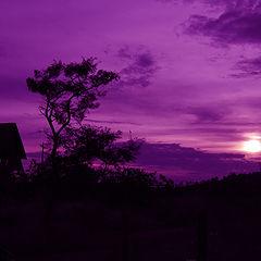 """photo """"purple sunset"""""""