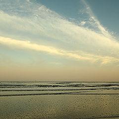 """фото """"Gulf of Mexico"""""""