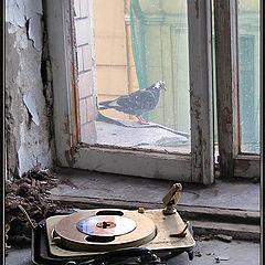 "фото ""В старом доме"""