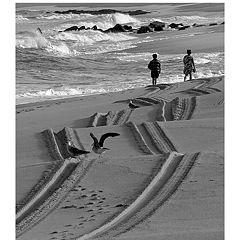 """фото """"Trails"""""""