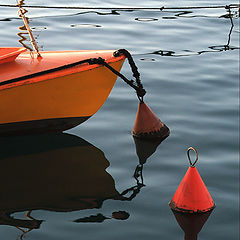 "photo ""Sea still life"""