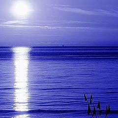 """фото """"Blue"""""""