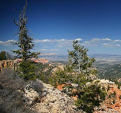 """photo """"Bryce Canyon's View"""""""