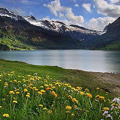 "photo ""Alpins hills"""