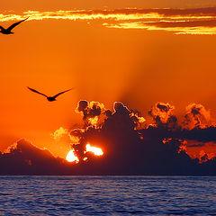 "photo ""Black Sea."""