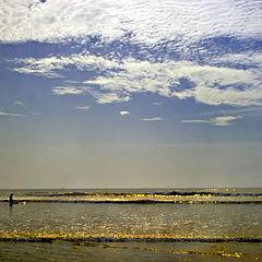 "photo ""Golden waves"""