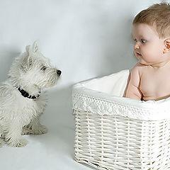 """photo """"It is my basket!"""""""