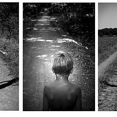 """фото """"walk of life"""""""