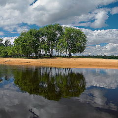 "photo ""Mologa river summer panorama"""