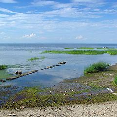 """photo """"Kotlin island. Finnish bay's coast"""""""