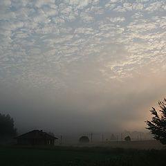 "фото ""Morning"""