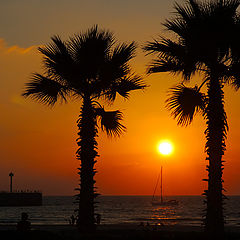 "photo ""Hot sunset in Marina 2"""