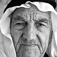 "photo ""Patriarch"""