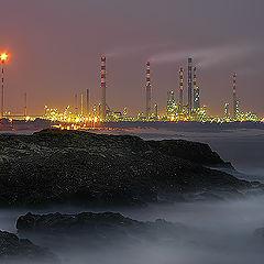 "фото ""The Oil facility complex"""
