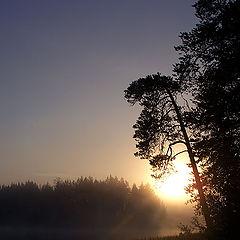 """фото """"утро"""""""